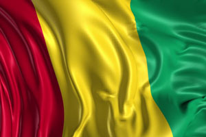 Documents legalization Services for Guinea Embassy in Washington D.C.