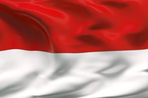 Documents legalization Services for Indonesia Embassy in Washington D.C.