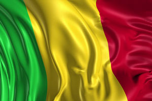 Documents legalization Services for Mali Embassy in Washington D.C.