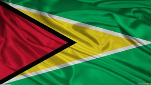 Get rush Apostille for Guyana now from Washington DC Apostille.